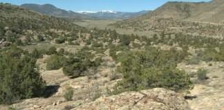 BLM site vandalized Del Norte CO