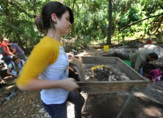 Michele Pierson sifts for artifacts Thursday at an archaeological dig on Big Talbot Island