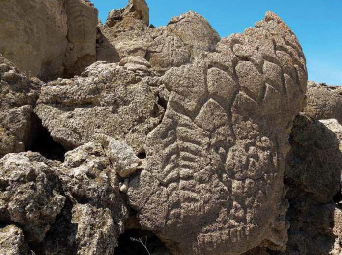 Rock Art Revelations