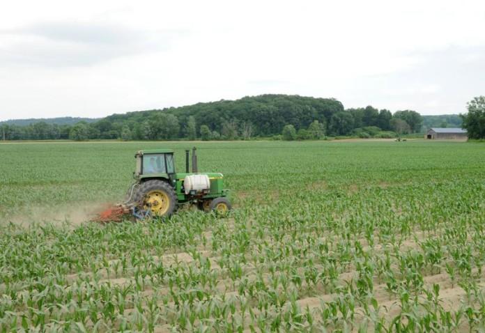 Yazwinski Farmland