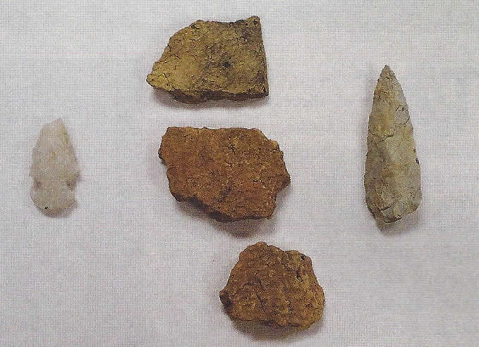 Cashie pottery sherds and projectile points recovered from the site.