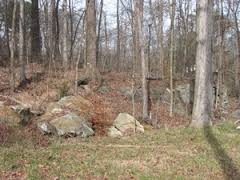 Small outcrops on local road shoulder, gneiss and soapstone of Soapstone Ridge Complex, weathered. Image from georgiarocks.us