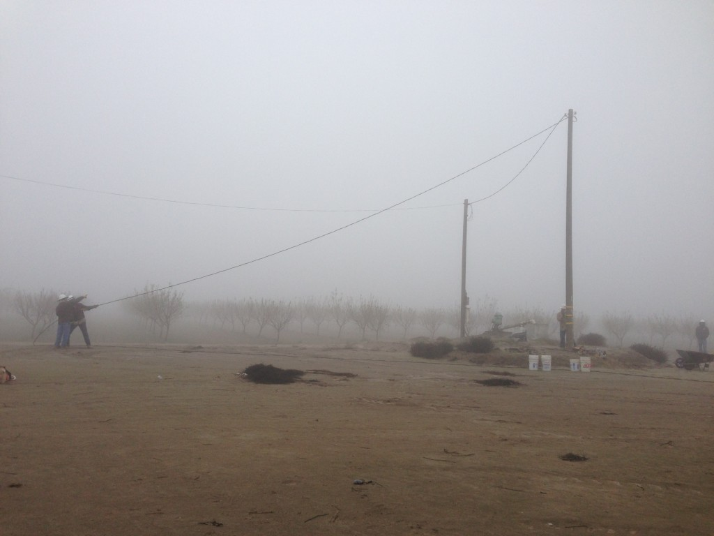 Kings 4 Archaeological Preserve, CA in deep fog.