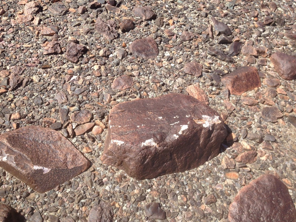 Scars on desert pavement left by tanks