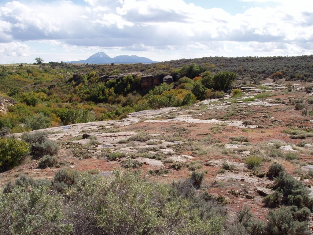 Yellow Jacket Canyon (left) Sleeping Ute Mountain (background) Yellow Jacket Pueblo (sage–covered mounds to the right of Sleeping Ute Mountain)