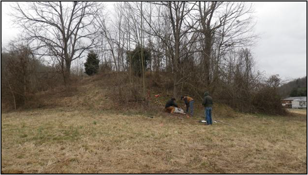 Newly recorded site Mound, Kentucky.