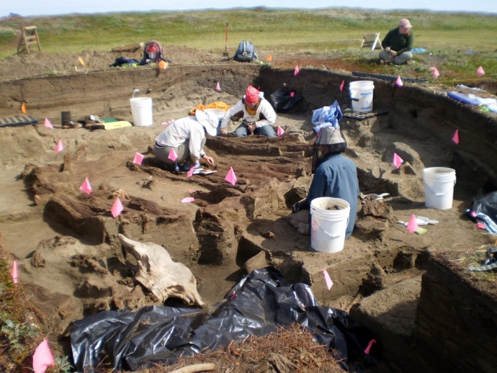 Archaeologists working at the Rising Whale site at Cape Espenberg, Alaska, have discovered several artifacts that were imported from East Asia. Credit: Photo courtesy University of Colorado