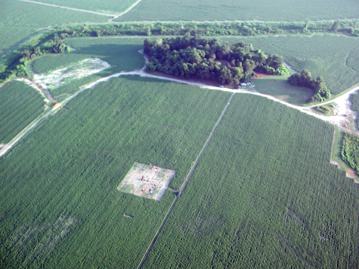 Ariel Overview of the Parchman Site. Photo credit The University of Mississippi Center for Archaeological Studies