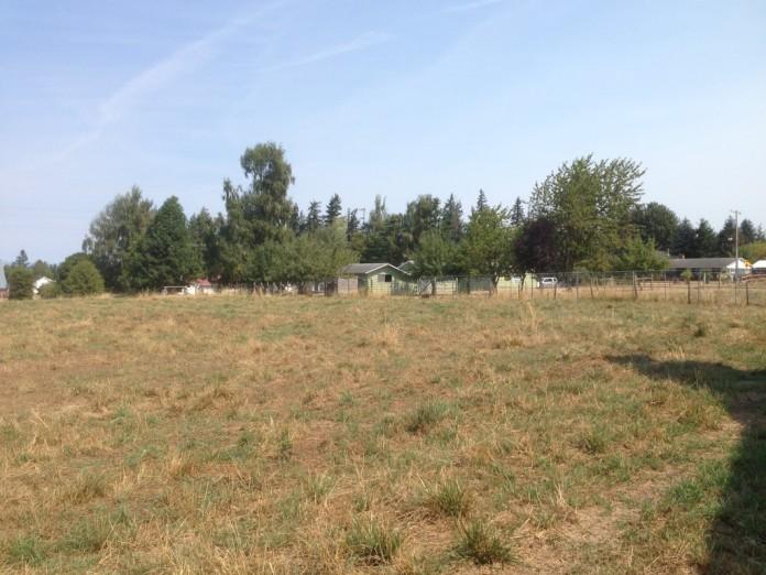 An overview of the Jokumsen Preserve, Washington.