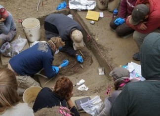 Researchers work on excavation at the Upward Sun River site in Alaska. Image courtesy of Ben Potter, UAF