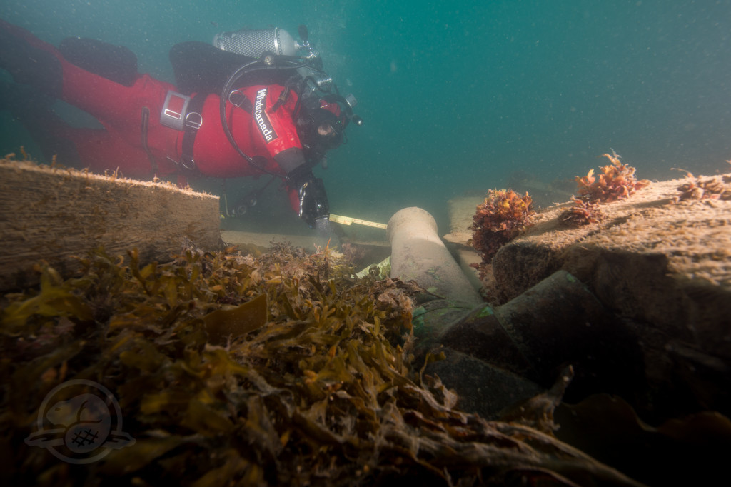 Cannons and loose timbers on the starboard stern. Diver Filippo Ronca taking measurements at the muzzle.