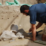 A member of the team works slowly and carefully excavating. Credit: Loren Davis