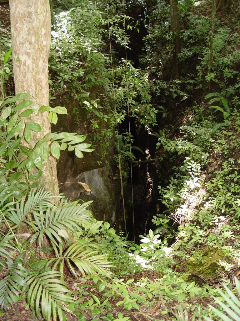 The Chasm at Auguateca. Photo courtesy John Henderson.