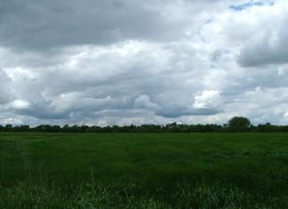 The Biesterfeldt Site Archaeological Preserve, North Dakota. Lush grass, few neighbors, no problems.