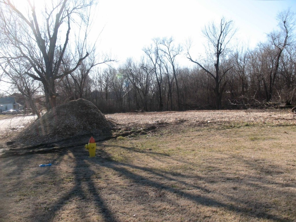 Formerly overgrown lot midway through clearing. The mound behind the fire hydrant is wood chips from the cleared vegetation. The ground in the middle distance is covered as well.
