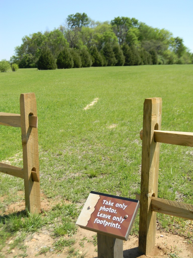 View of Mound 14 at Ingomar Mounds.
