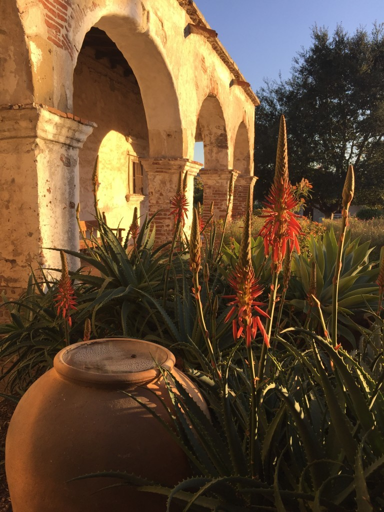 Photo 1: Stunning Scenery at Mission San Juan Capistrano.