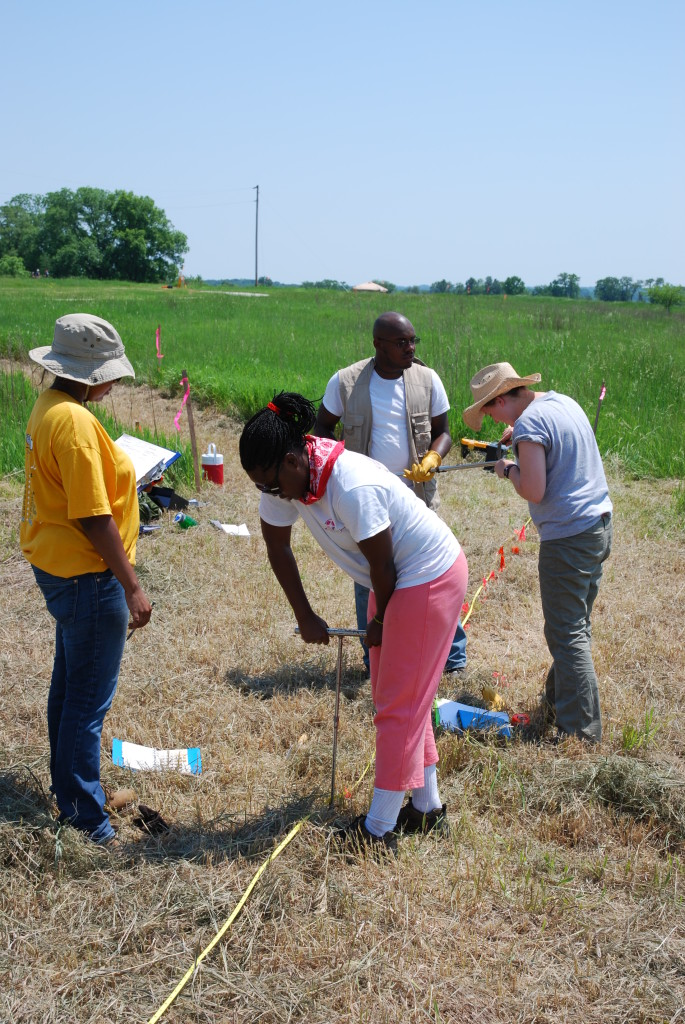 2009 Excavation Team hard at Work, New Philidelphia. Photo Credit: Doug Carr, Illinois State Museum.