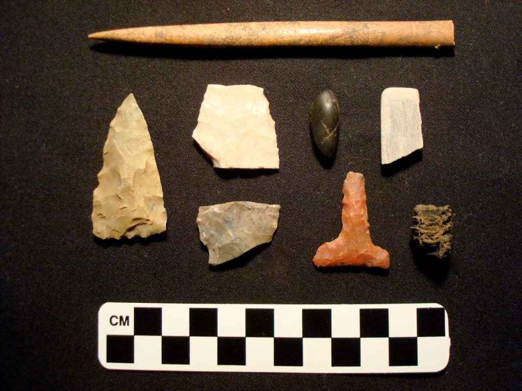 Artifacts recovered from the Kiva back dirt. Photo Courtesy Erin Baxter.