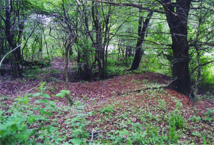 The circular earthwork is located in a wooded area. Archaeologists don't know what purpose earthworks served.