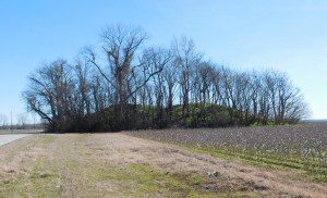 Mound B photo—Mound B is one of two double mounds at the Carson Mounds preserve in Mississippi. Credit Jessica Crawford