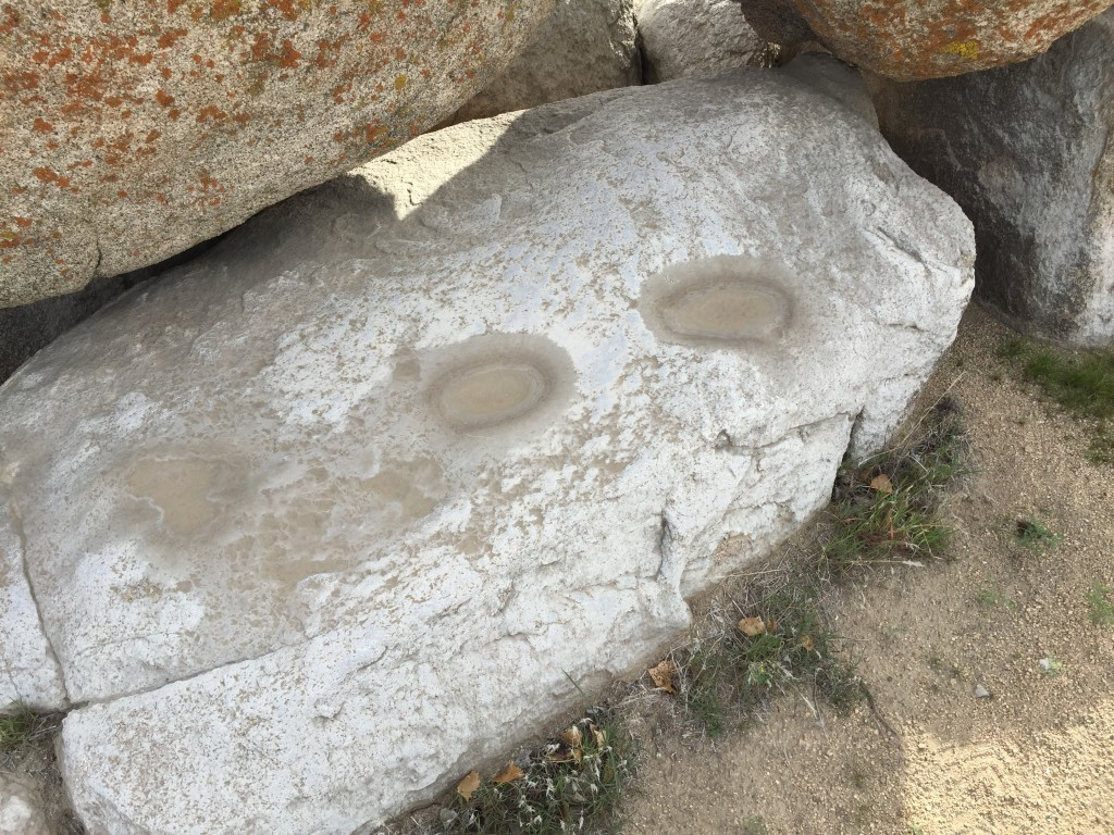 Bedrock mortars from Workplace on the Mojave Preserve