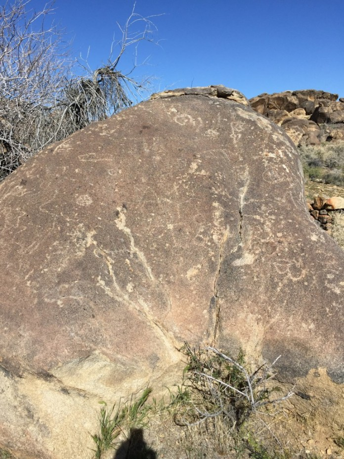 Petroglyphs at the Wllis Wells Site