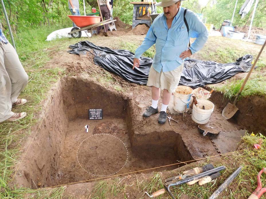 The pattern of the post hole just beneath the level from which the post was removed. Photo TAC/Jessica Crawford.