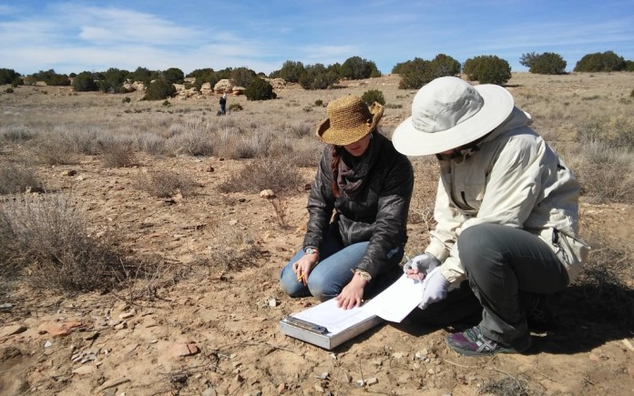 Researchers at work on the 500th Site Pueblo. Photo Chaz Evans/TAC.