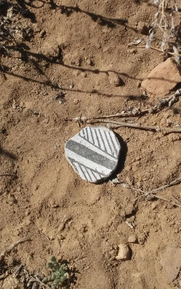 Gaming Piece found on Surface of the 500th Site Pueblo. Photo Chaz Evans/TAC.