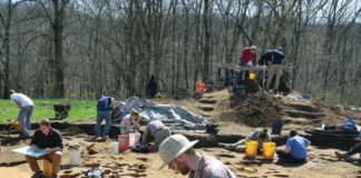 Archaeologists, students, and volunteers document hearths and posts associated with structures that once stood on the southern edge of the Fox Farm village. Credit Art Dickinson.
