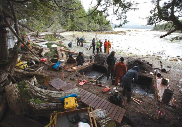 The crew excavates in an intertidal zone where the footprint features were found preserved beneath beach sands. Credit: Grant Callegari / Hakai Institute