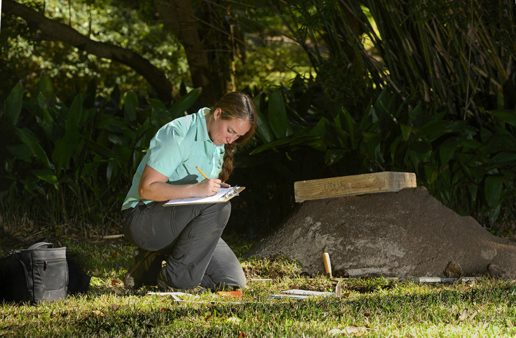 Researcher Meghan Mumford takes notes at the Luna settlement. credit: University of West Florida