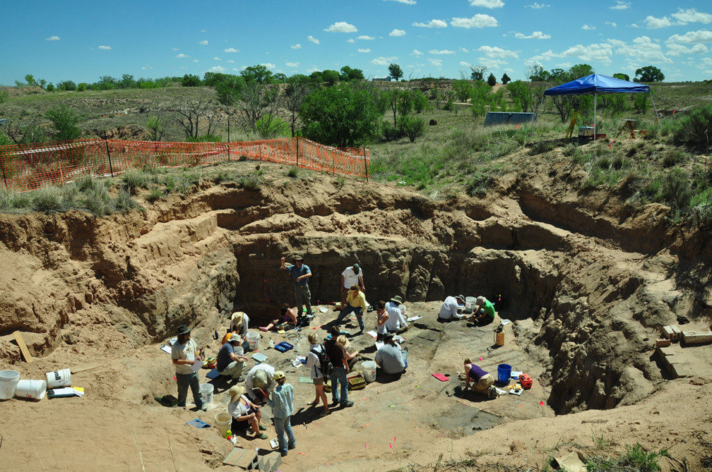 Recent Excavation on the South Bank of the Clovis Site. Credit: Blackwater Draw Archives, Eastern New Mexico University.