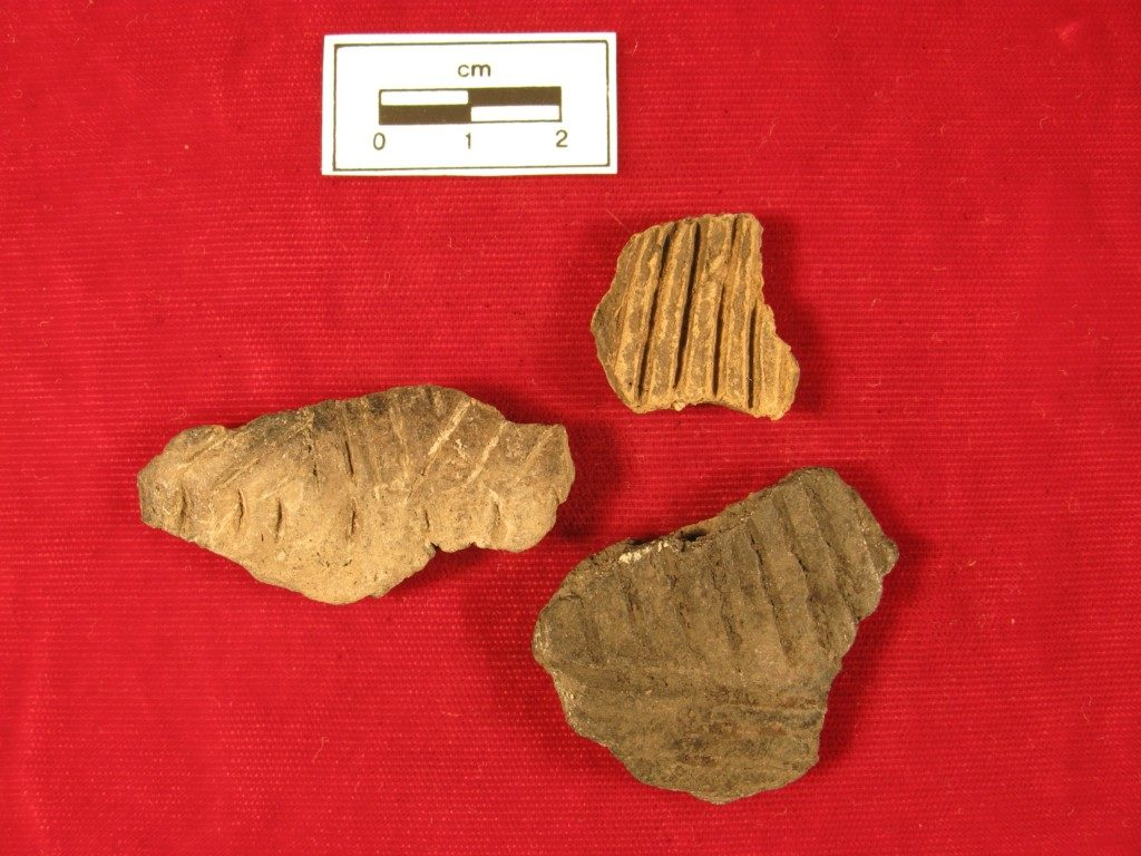 Examples of Fine-line Incised Ceramics from RM-215 (Schultz) and RM 210 ( ) that anticipate some of the styles found on Biesterfeldt ceramics.