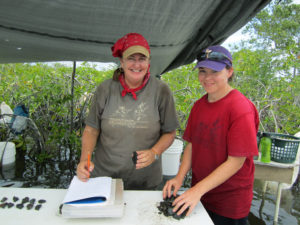 Heather McKillop and former graduate student Tamara Spann work at a lab set up near one of the underwater sites. Credit: Cory Sills.