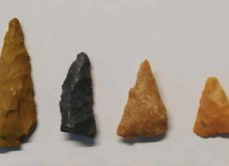 Small Mississippian-style arrow points have been found around Taylor Mound. Credit: The Archaeological Conservancy.