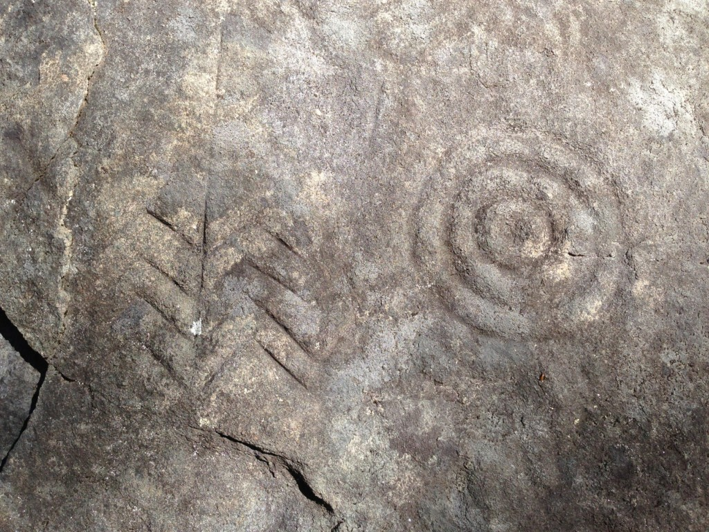 Some of the Many Petroglyphs at the Terrarium site that will be protected when the Conservancy and our Members are able to preserve the site. Photo The Archaeological Conservancy.