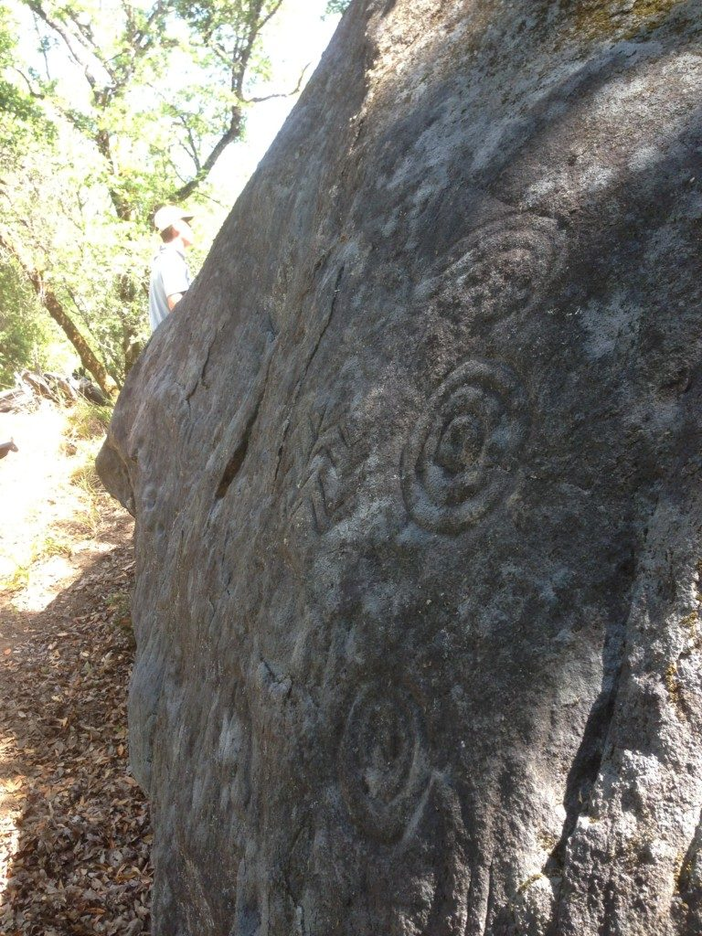 Large Boulder  with ritual petroglyphs on Terrarium site. Photo The Archaeological Conservancy.