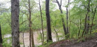 The MonocacyThe Monocacy River, a tributary of the Potomac River, flows next to the site. Photo The Archaeological Conservancy.