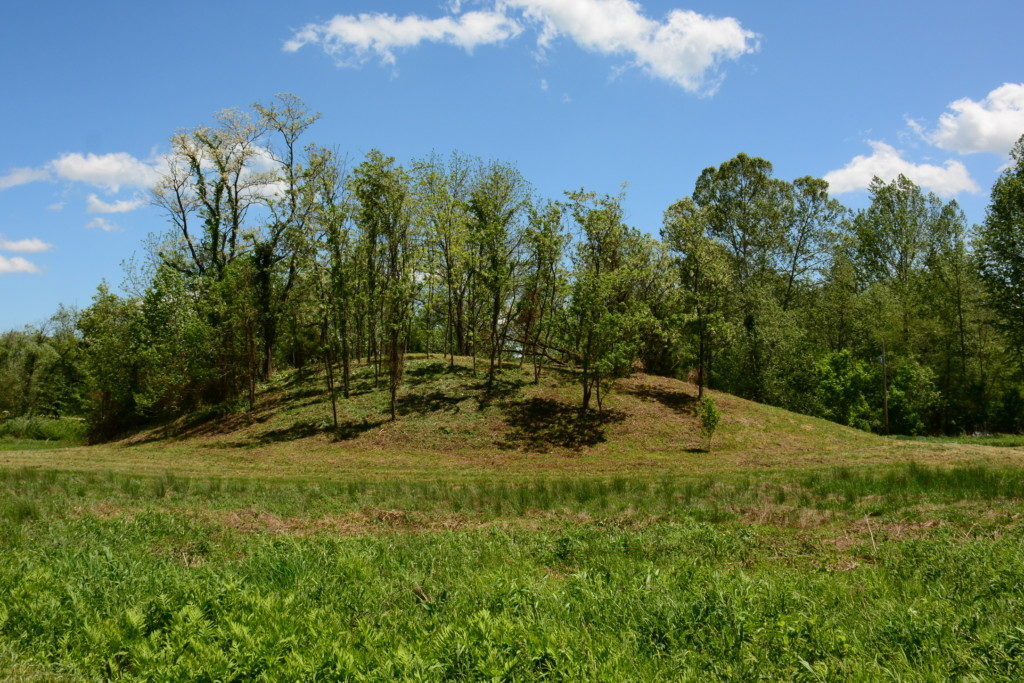 The mound now clearly visible after clean-up and clearing by hard-working volunteers.