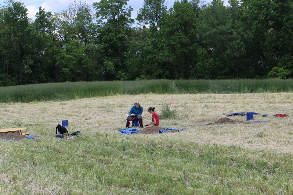 Recording the results of the Shovel Test Pit survey. Credit: Binghamton University Fieldschool