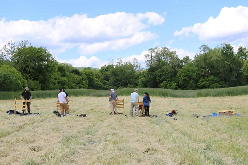 Doing Shovel test pits along with a metal detecting survey. Credit: Binghamton University Fieldschool