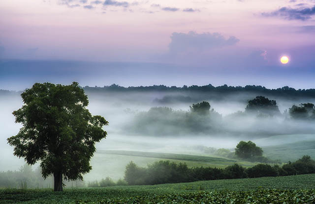 Early morning fog clings to the rolling hills at Chancellorsville Battlefield, one of several battlefields at Fredericksburg & Spotsylvania National Military Park. Credit: Buddy Secor