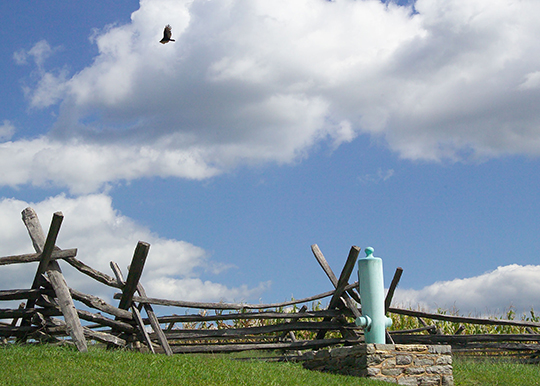 Six generals—three from each army—were killed or mortally wounded during the Battle of Antietam in 1862. A so-called mortuary cannon marks the spot where each of the generals fell. Credit: NPS