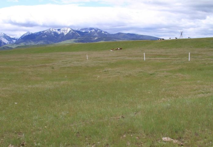 Fort Parker, Montana, The First Crow Agency as it Looks Today. Photo The Archaeological Conservancy.