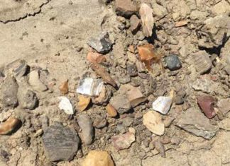 After a rain, historic and prehistoric pottery, as well as stone tools from various time periods, washed into piles on the site's surface. Photo The Archaeological Conservancy.