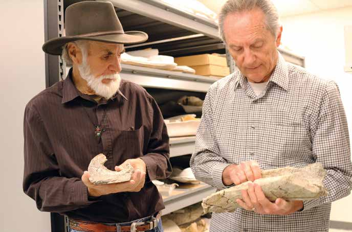 Retired San Diego Natural History Museum paleontologist Richard Cerutti (left) and Tom Deméré, the museum's curator of paleontology, look at mastodon bones recovered from the site. Credit: Kate Johnson, San Diego Natural History Museum.