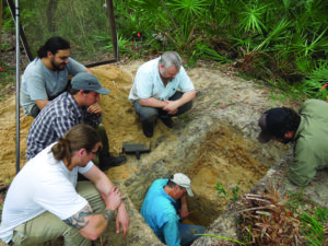 A crew from the University of Florida excavates the badly looted Palmetto Mound on Hog Island in October 2015 to retrieve datable material. Credit: Josh Goodwin