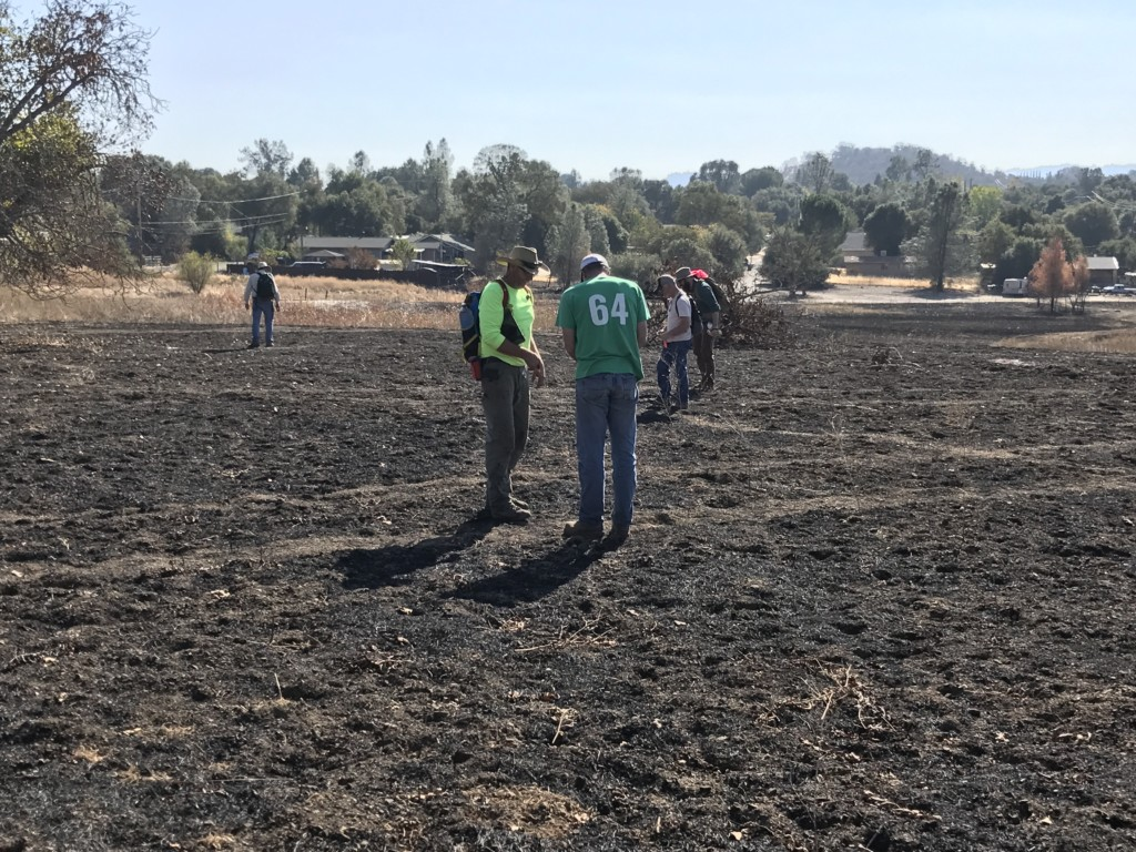 Dr. Gregory White and his team of volunteer survey of the fire landscape at Borax Lake. Photo The Archaeological Conservancy.